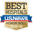 Best Hospitals Honor Roll 2018-19 USA